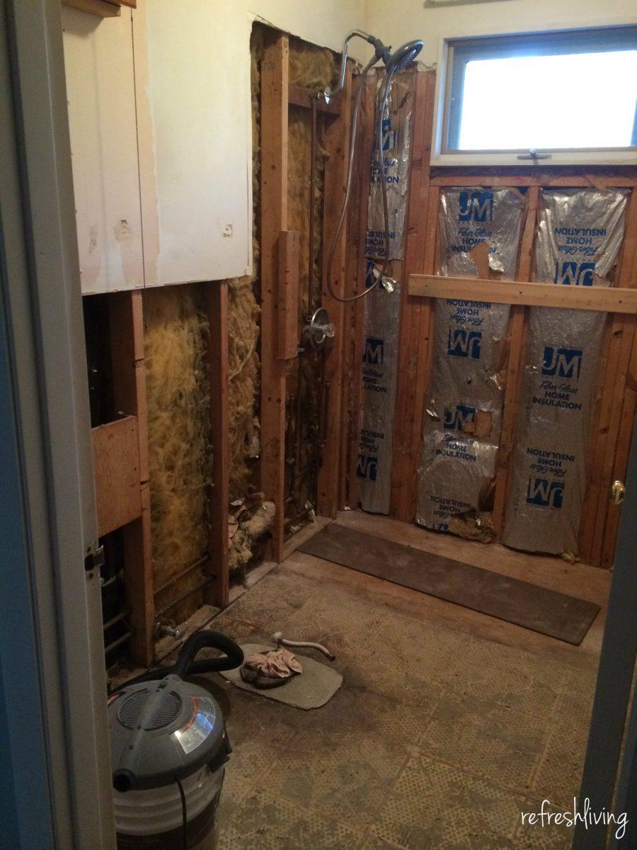 Bathroom Remodel Gut Refresh Living - How to gut a bathroom