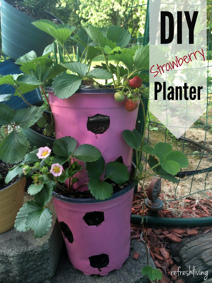 Diy strawberry planter from recycled materials pinterest for Pot painting materials required