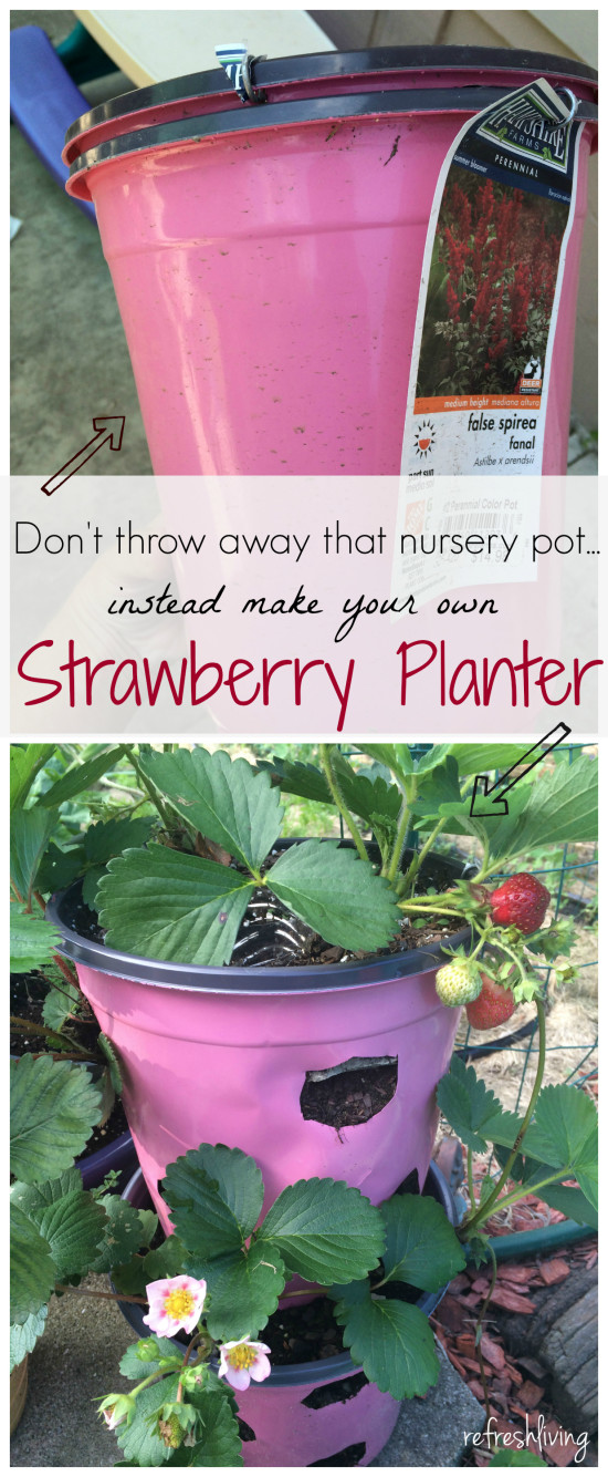 upcycled DIY strawberry planter pot