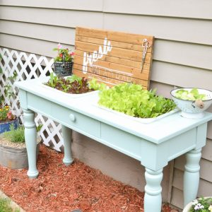 DIY Raised Garden Bed (from an old sofa table!)