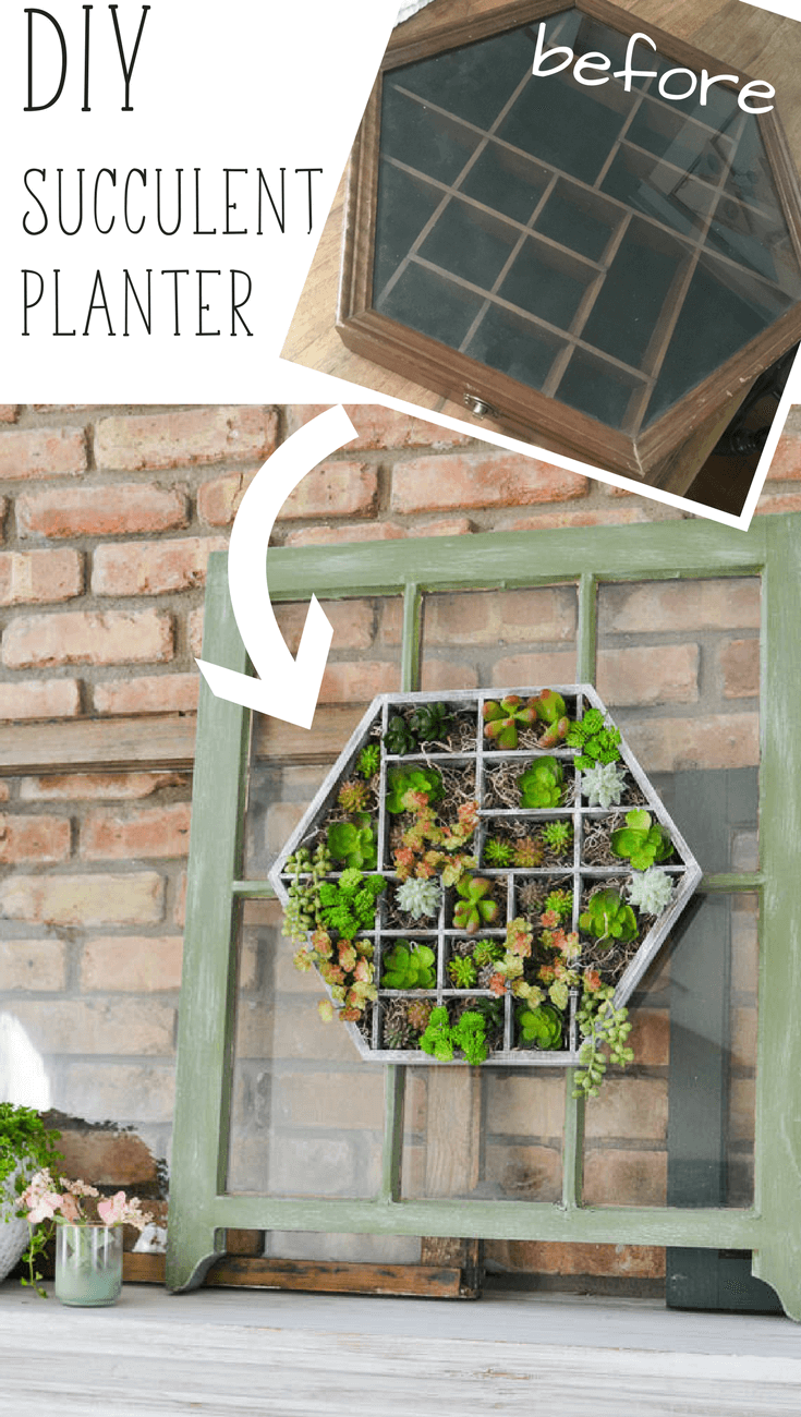 Diy Succulent Planter From Thrift Store Find 1 Refresh Living